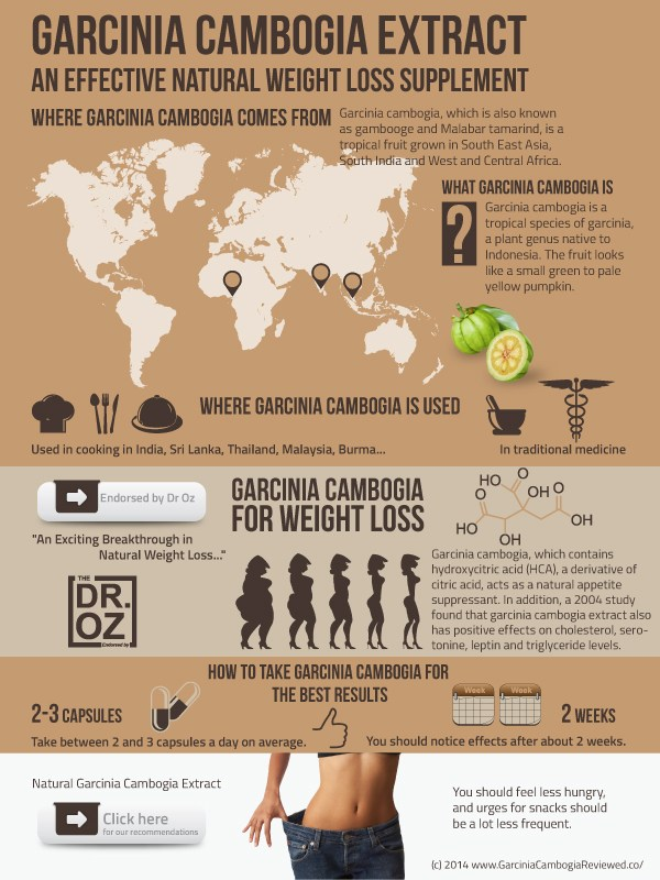 Garcinia Cambogia - Natural Weight Loss Supplement